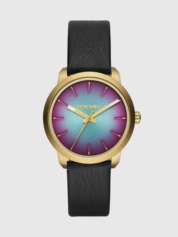DZ5571,  - Timeframes