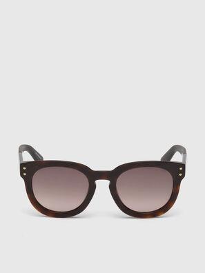 DL0230, Brown/Black - Sunglasses