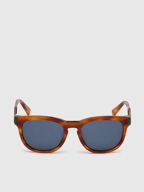 DL0237, Light Brown - Sunglasses