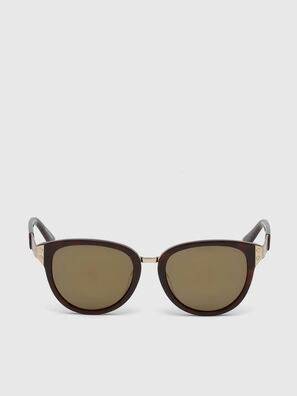 DL0234, Brown - Sunglasses